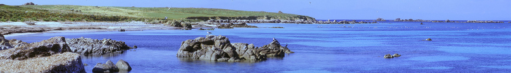 Marine Protected Area of Penisola del Sinis